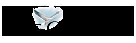 capecodonline_logo